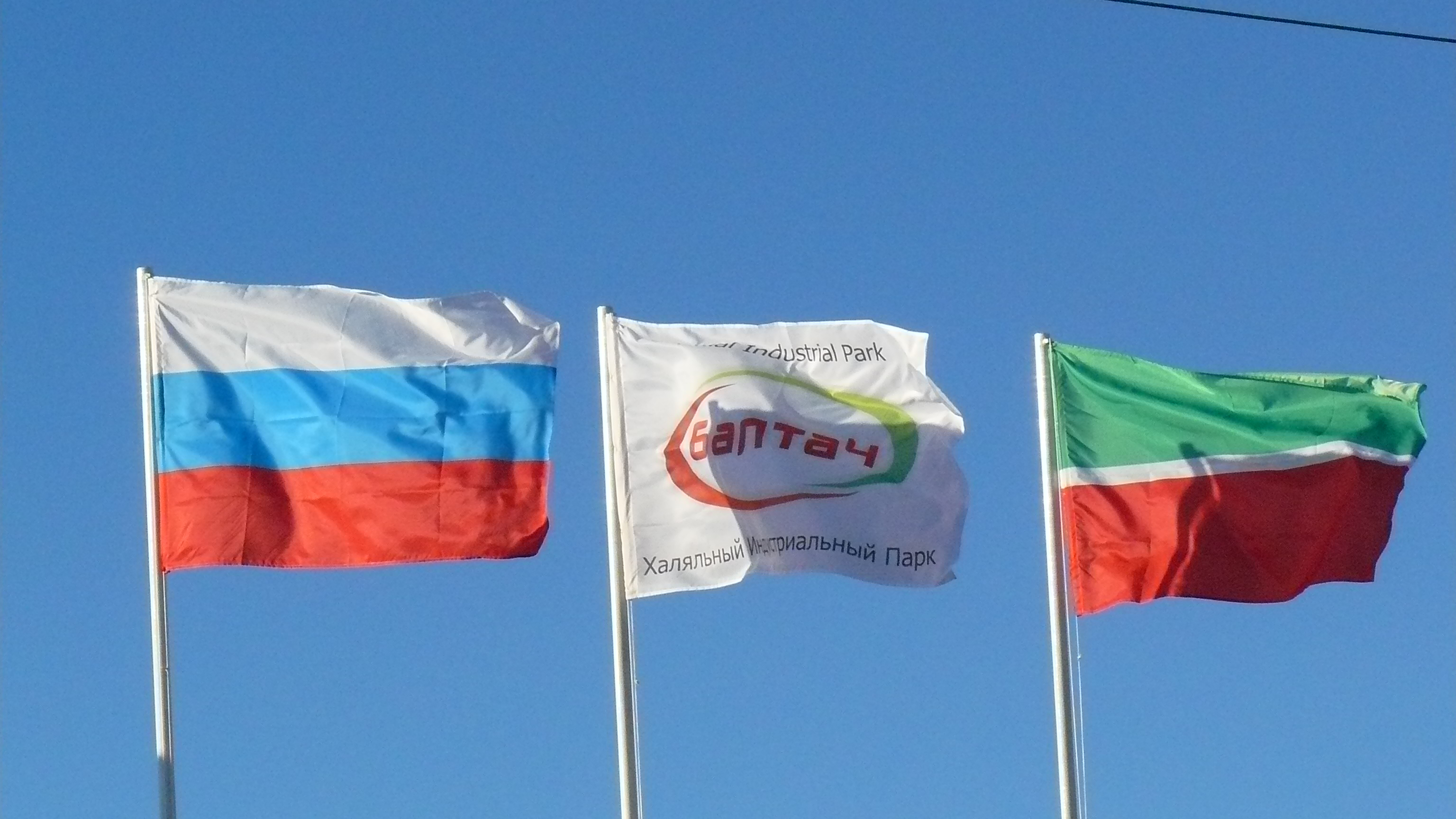 The opening of first Halal Industrial Park in Russia